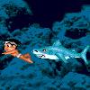 Diver Boy
