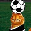 Garfield Kickin it - Sports Games