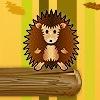 Hedgehog Challenge