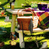 Picnic Time - Hidden Object Games