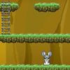 Rabbit Adventure Game