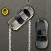 Rich Car Parking