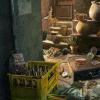 The Great Treasure Hunt - Hidden Object Games