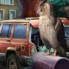 Visit to Owl Street