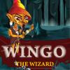 Wingo the Wizard